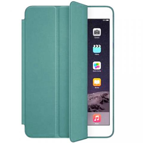 Чехол Smart Case для iPad Air 10,9 (2020) Cactus